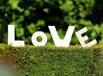 Toute la décoration de mariage - Deco mariage en Belgique - le ...